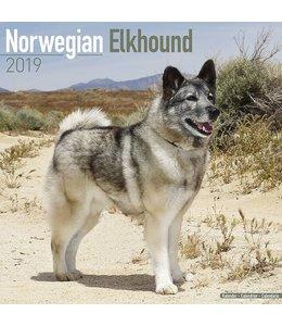 Avonside Noorse Elandhond Kalender 2019