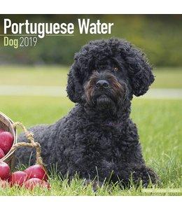 Avonside Portugese Waterhond Kalender 2019