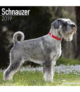 Avonside Schnauzer Kalender 2019