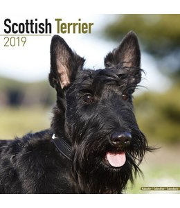 Avonside Schotse Terrier Kalender 2019