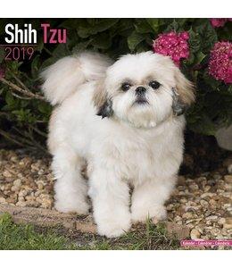 Avonside Shih Tzu Kalender 2019
