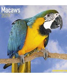 Avonside Ara Kalender 2019