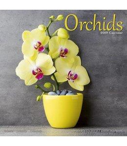 Avonside Orchidee Kalender 2019