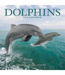 Avonside Dolfijnen Kalender 2019