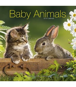 Avonside Baby Animals Kalender 2019