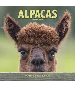 Avonside Alpaca Kalender 2019