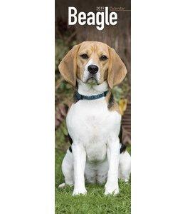 Avonside Beagle Kalender 2019 Slimline