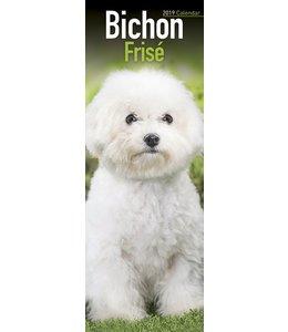 Avonside Bichon Frise Kalender 2019 Slimline