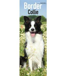 Avonside Border Collie Kalender 2019 Slimline