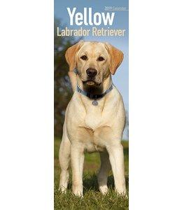 Avonside Labrador Retriever Kalender Blond 2019 Slimline