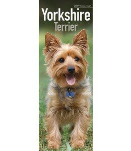 Avonside Yorkshire Terrier Kalender 2019 Slimline