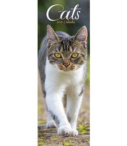 Avonside Katten Kalender 2019 Slimline
