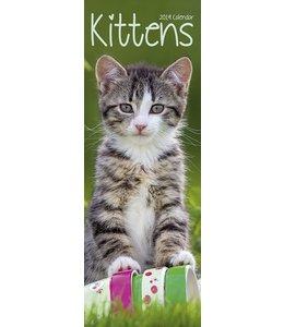 Avonside Kittens Kalender 2019 Slimline
