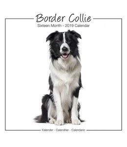 Avonside Border Collie Kalender Studio Range 2019