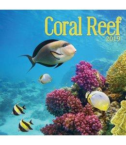 TL Turner Coral Reef Kalender 2019