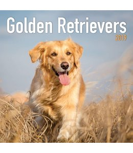 TL Turner Golden Retriever Kalender 2019