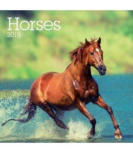 TL Turner Paarden Kalender 2019