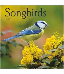 TL Turner Songbirds Kalender 2019