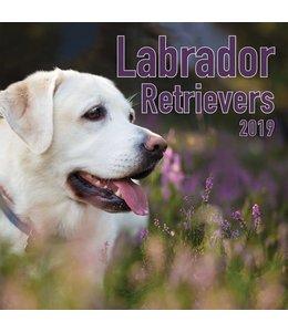 TL Turner Labrador Retriever Mixed Kalender 2019