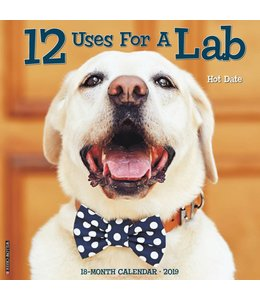 Willow Creek 12 Uses for a Lab Kalender 2019