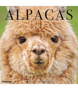 Willow Creek Alpacas Kalender 2019