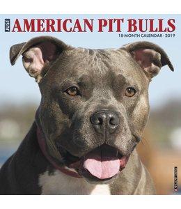 Willow Creek American Pit Bull Terrier Kalender 2019