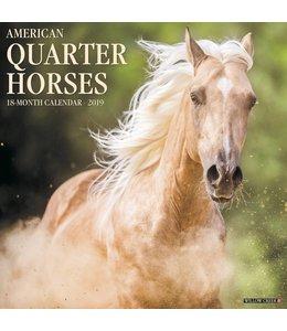 Willow Creek American Quarter Horse Kalender 2019
