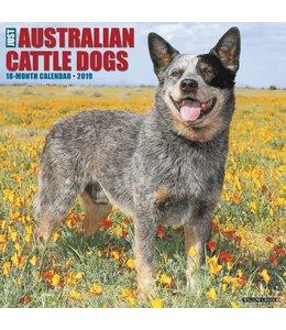 Willow Creek Australian Cattle Dog Kalender 2019