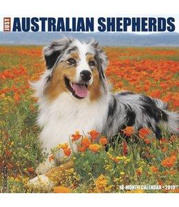 Willow Creek Australian Shepherd Kalender 2019