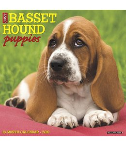Willow Creek Basset Hound Puppies Kalender 2019