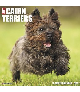 Willow Creek Cairn Terrier Kalender 2019