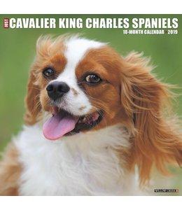 Willow Creek Cavalier King Charles Spaniel Kalender 2019