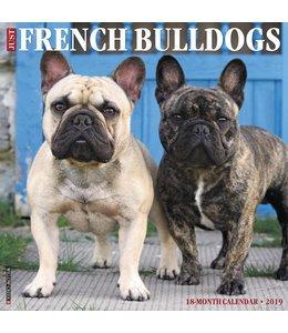 Willow Creek Franse Bulldog Kalender 2019