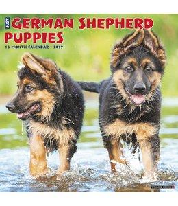 Willow Creek Duitse Herder Puppies Kalender 2019