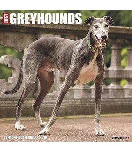 Willow Creek Greyhound Kalender 2019