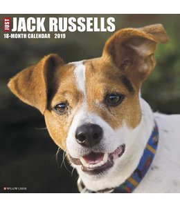 Willow Creek Jack Russell Terrier Kalender 2019