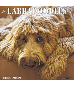 Willow Creek Labradoodle Kalender 2019