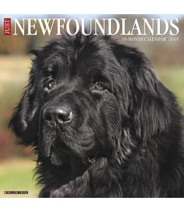 Willow Creek Newfoundlander Kalender 2019