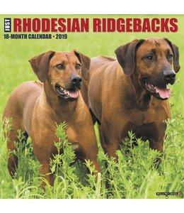 Willow Creek Rhodesian Ridgeback Kalender 2019
