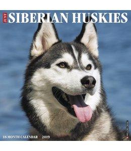 Willow Creek Siberian Husky Kalender 2019