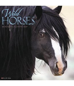 Willow Creek Wild Horses Kalender 2019