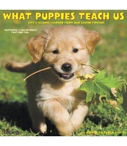 Willow Creek What Puppies Teach Us Kalender 2019