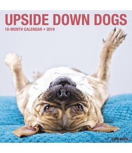 Willow Creek Upside Down Dogs Kalender 2019