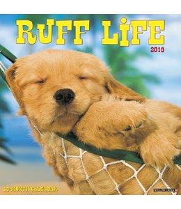 Willow Creek Ruff Life Kalender 2019
