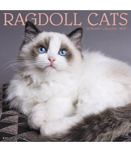 Willow Creek Ragdoll Kalender 2019