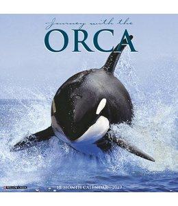 Willow Creek Orca Kalender 2019