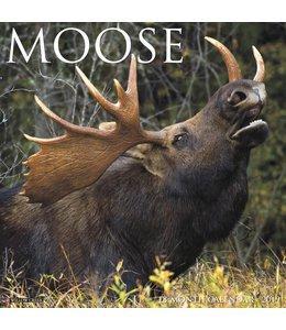 Willow Creek Eland / Moose Kalender 2019