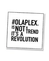 Olaplex® Banner Citát