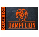 ORANGE LION Aroma 20ml – Dampflion