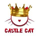 CopyCat Aroma CASTLE CAT 10ml